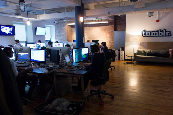 tumblr office working team startup Creative Interior Design Of Offices