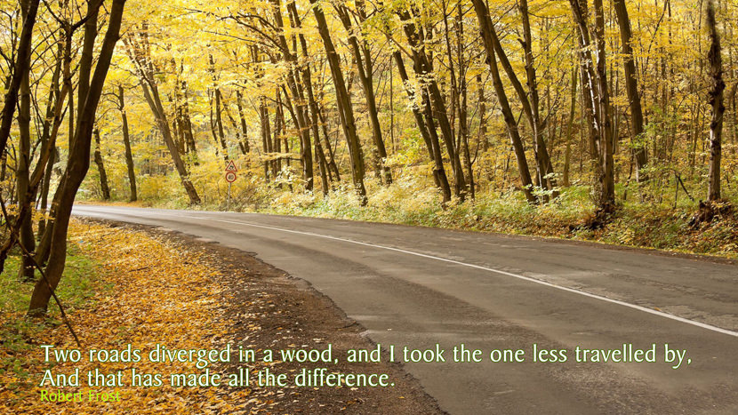 two roads diverged in a wood, and I took the one less traveled by, and that has made all the difference.