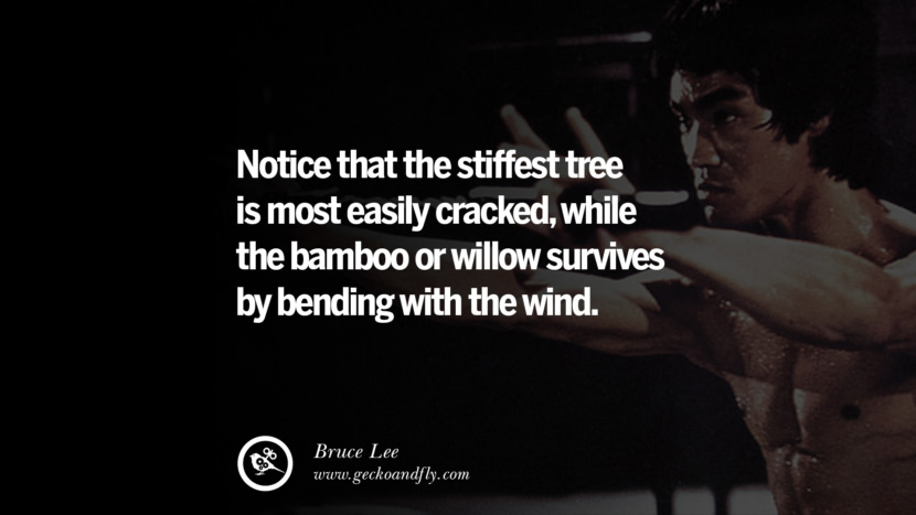 Notice that the stiffest tree is most easily cracked, while the bamboo or willow survives by bending with the wind. best inspirational tumblr quotes instagram Quotes from Bruce Lee's Martial Arts Movie kung fu Ip man