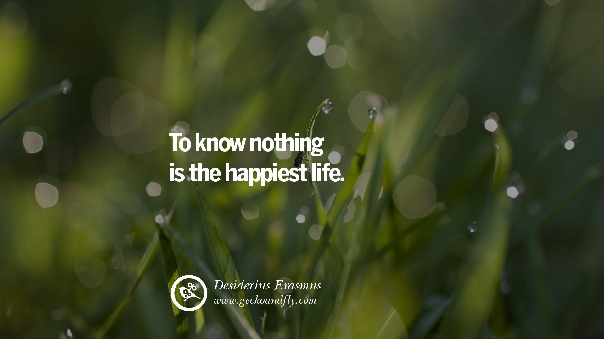 20 Inspirational Quotes About Life Sayings, Love And Happiness [ Part 2 ]