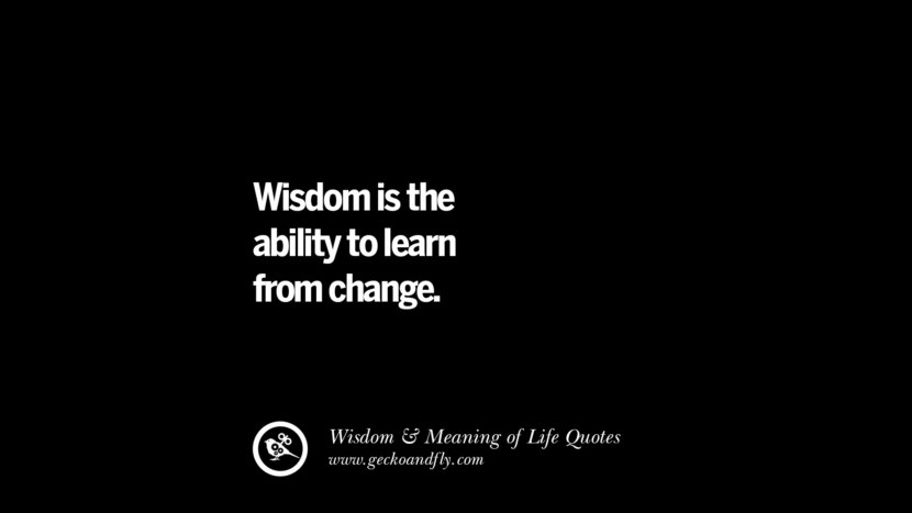 Wisdom is the ability to learn from change. funny wise quotes about life tumblr instagram wisdom Funny Eye Opening Quotes About Wisdom And Life twitter reddit facebook pinterest tumblr