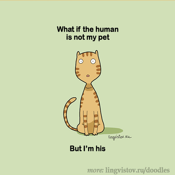 What if the human is not my pet... But I'm his. 40 Funny Doodles For Cat Lovers and Your Cat Crazy Lady Friend grumpy tom talking nyan instagram pinterest facebook twitter comic pictures youtube