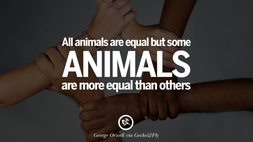 All animals are equal but some animals are more equal than others. George Orwell Quotes From Shooting An Elephant, 1984 and Animal Farm instagram facebook twitter pinterest