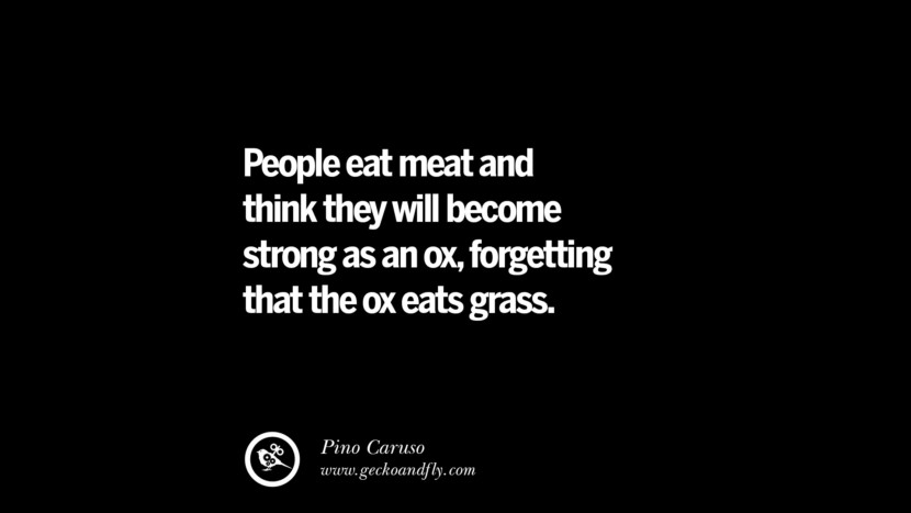 People eat meat and think they will become strong as an ox, forgetting that the ox eats grass. - Pino Caruso Delicious Quotes on Vegetarianism, Being A Vegetarian And Killing Animals