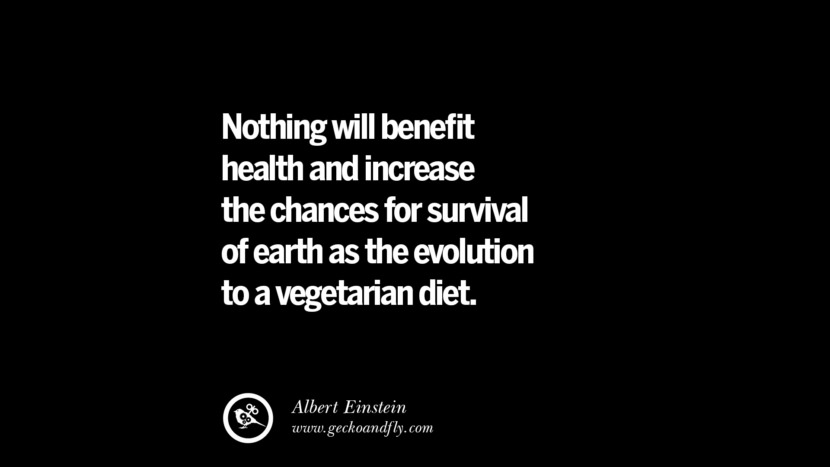 Nothing will benefit health and increase the chances for survival of earth as the evolution to a vegetarian diet. - Albert Einstein Delicious Quotes on Vegetarianism, Being A Vegetarian And Killing Animals