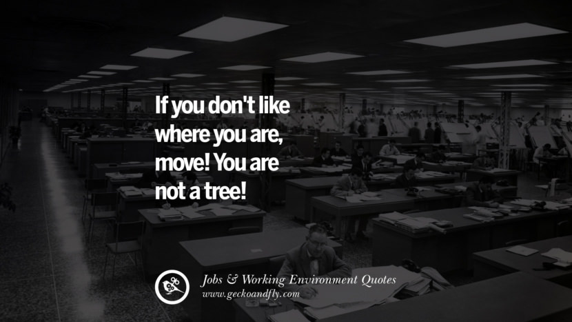 If you don't like where you are, move! You are not a tree! Quotes On Office Job Occupation, Working Environment and Career Success