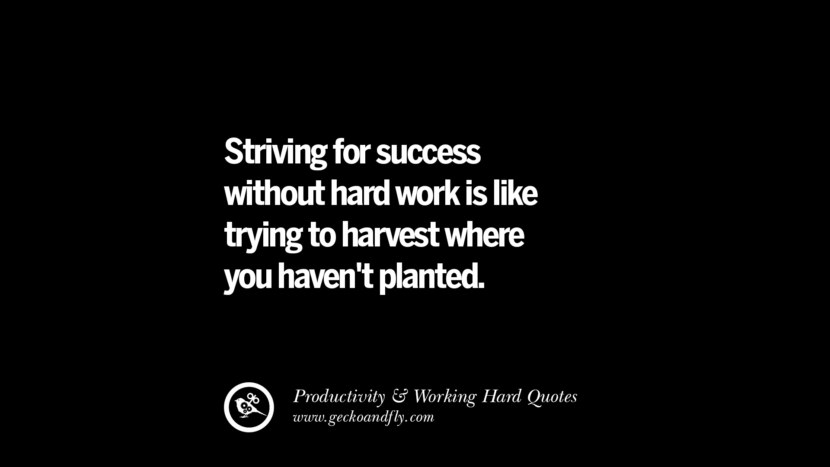 Striving for success without hard work is like trying to harvest where you haven't planted. Inspiring Quotes On Productivity And Working Hard To Achieve Success facebook instagram twitter tumblr pinterest poster wallpaper download