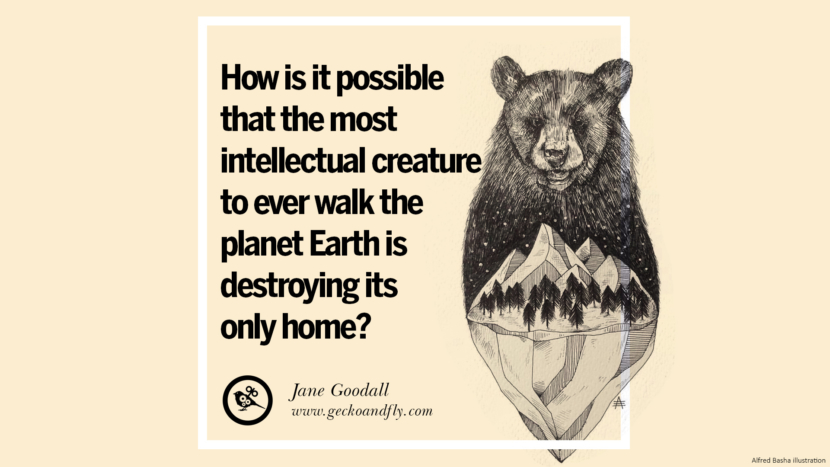 How is it possible that the most intellectual creature to ever walk the planet Earth is destroying its only home? - Jane Goodall Beautiful Quotes About Saving Mother Nature And Earth