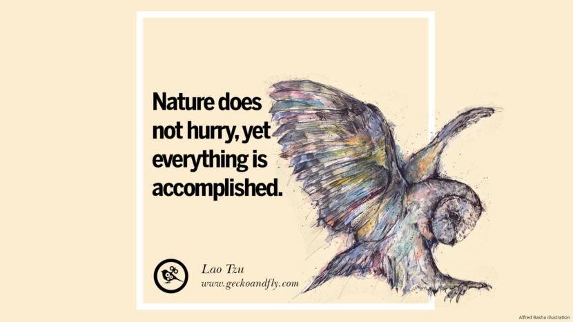 Nature does not hurry, yet everything is accomplished. - Lao Tzu Beautiful Quotes About Saving Mother Nature And Earth