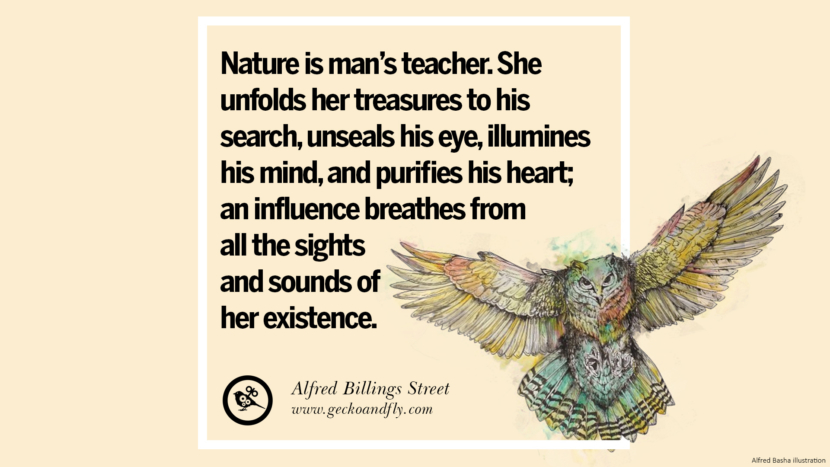 Nature is man's teacher. She unfolds her treasures to his search, unseals his eye, illumines his mind, and purifies his heart; an influence breathes from all the sights and sounds of her existence. - Alfred Billings Street Beautiful Quotes About Saving Mother Nature And Earth