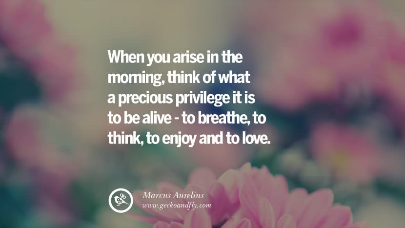 When you arise in the morning, think of what a precious privilege it is to be alive - to breathe, to think, to enjoy and to love. - Marcus Aurelius