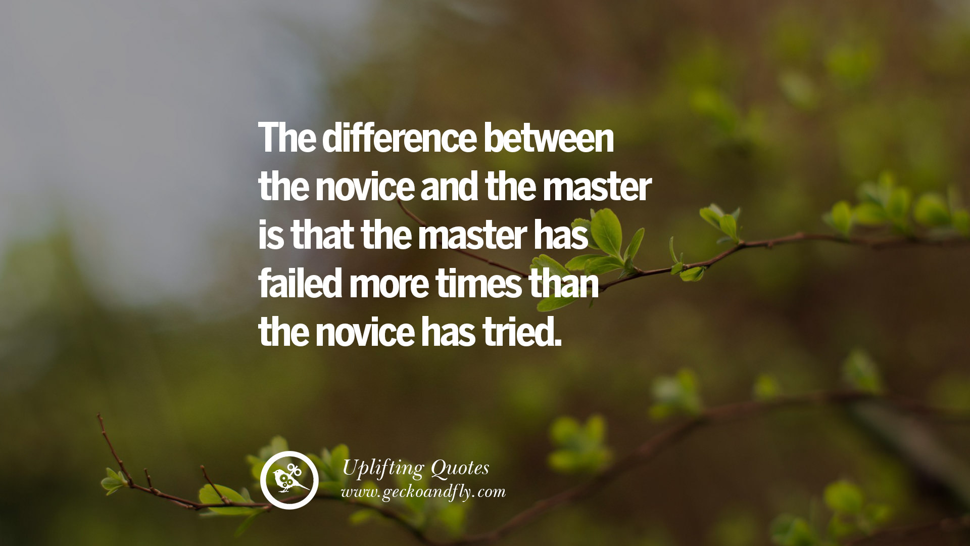 Image Result For Inspirational Quotes About Success And Failure