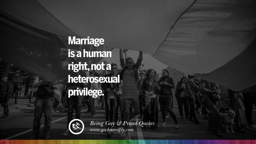 Marriage is a human right, not a heterosexual privilege. Quotes About Gay Pride, Pro LGBT, Homophobia and Marriage Discrimination Instagram Pinterest Facebook