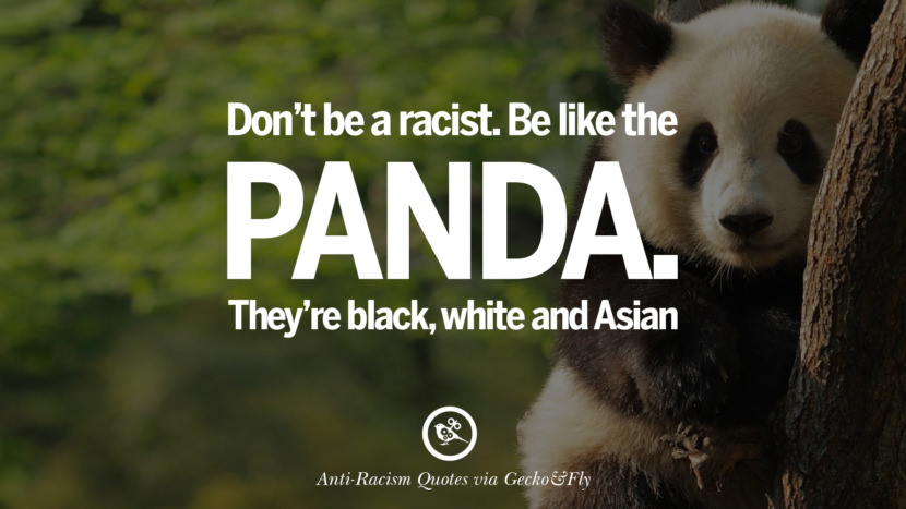 Don't be a racist. Be like the panda. They're black, white and Asian. Quotes About Anti Racism And Against Racial Discrimination Instagram Pinterest Facebook