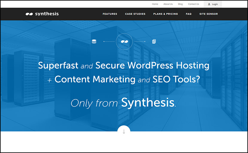 synthesis commercial web hosting