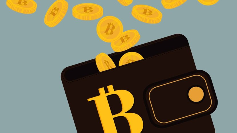 Best BitCoin Wallets With Low Transaction Fees
