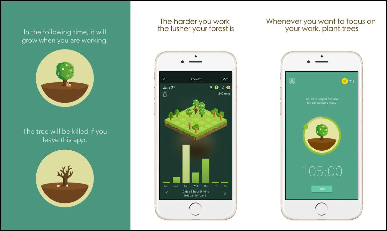 Image Result For Smartphone Addiction App