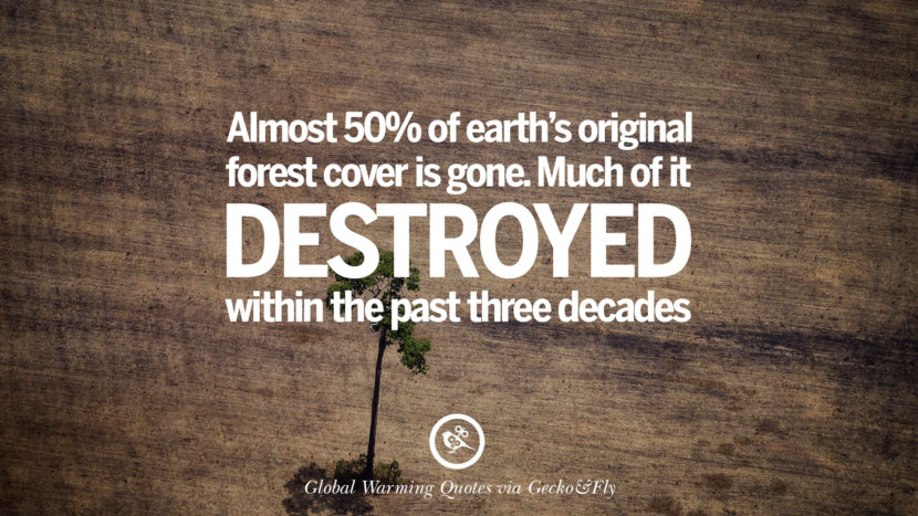 Almost 50% of earth's original forest cover is gone. Much of it destroyed within the past three decades. Global Warming Quotes About Carbon Dioxide, Greenhouse Gases, And Emissions