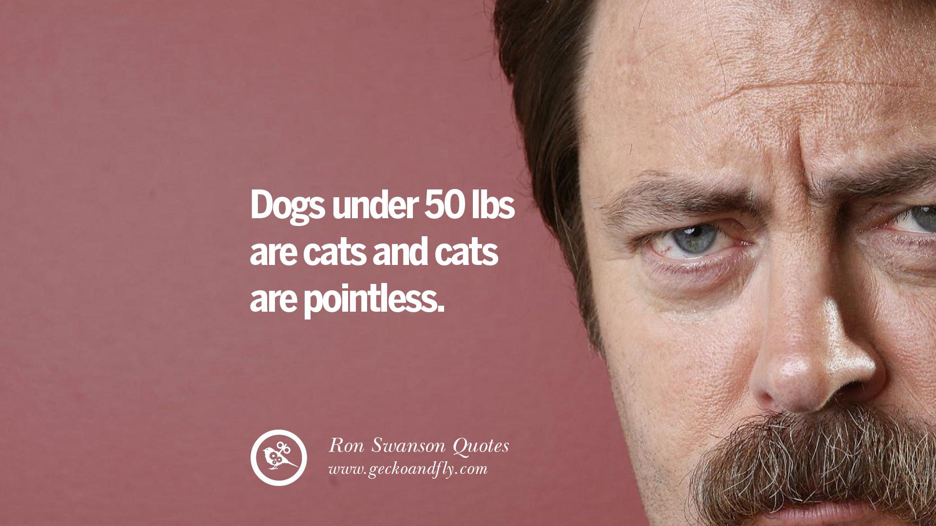 Ron Swanson Cat Meme