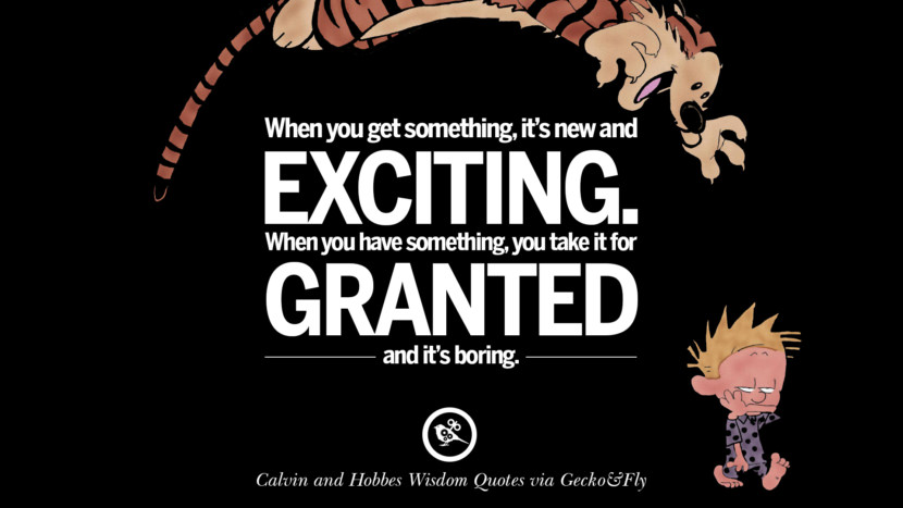 When you get something, it's new and exciting. When you have something, you take it for granted and it's boring. Calvin And Hobbes Words Of Wisdom Quotes And Wise Sayings