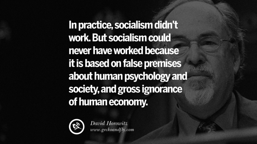 In practice, socialism didn't work. But socialism could never have worked because it is based on false premises about human psychology and society, and gross ignorance of human economy. - David Horowitz Anti-Socialism Quotes On Free Medical Healthcare, Minimum Wage, And Higher Tax