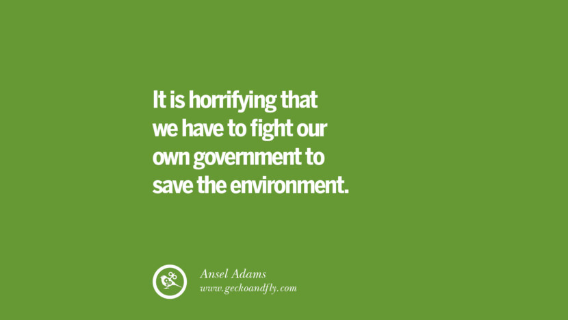 It is horrifying that we have to fight our own government to save the environment. – Ansel Adams