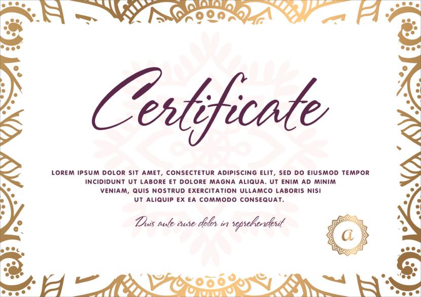 Screenshot of blank professional certificate template